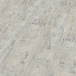 """Wineo 800 Wood   Lame PVC clipsable """"Copenhagen Frosted Pine"""""""