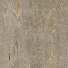 Lame PVC à coller | Amtico Spacia Wood Bleached Elm | D1