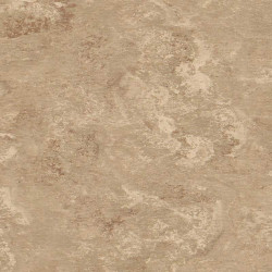 "Tarkett Veneto xf² 2,5 mm ""625 Silk"""